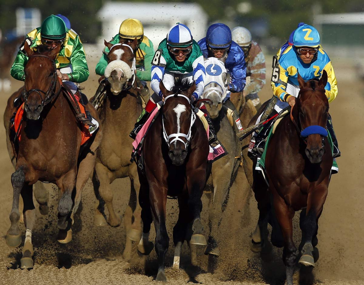 Horse Racing Travel Packages