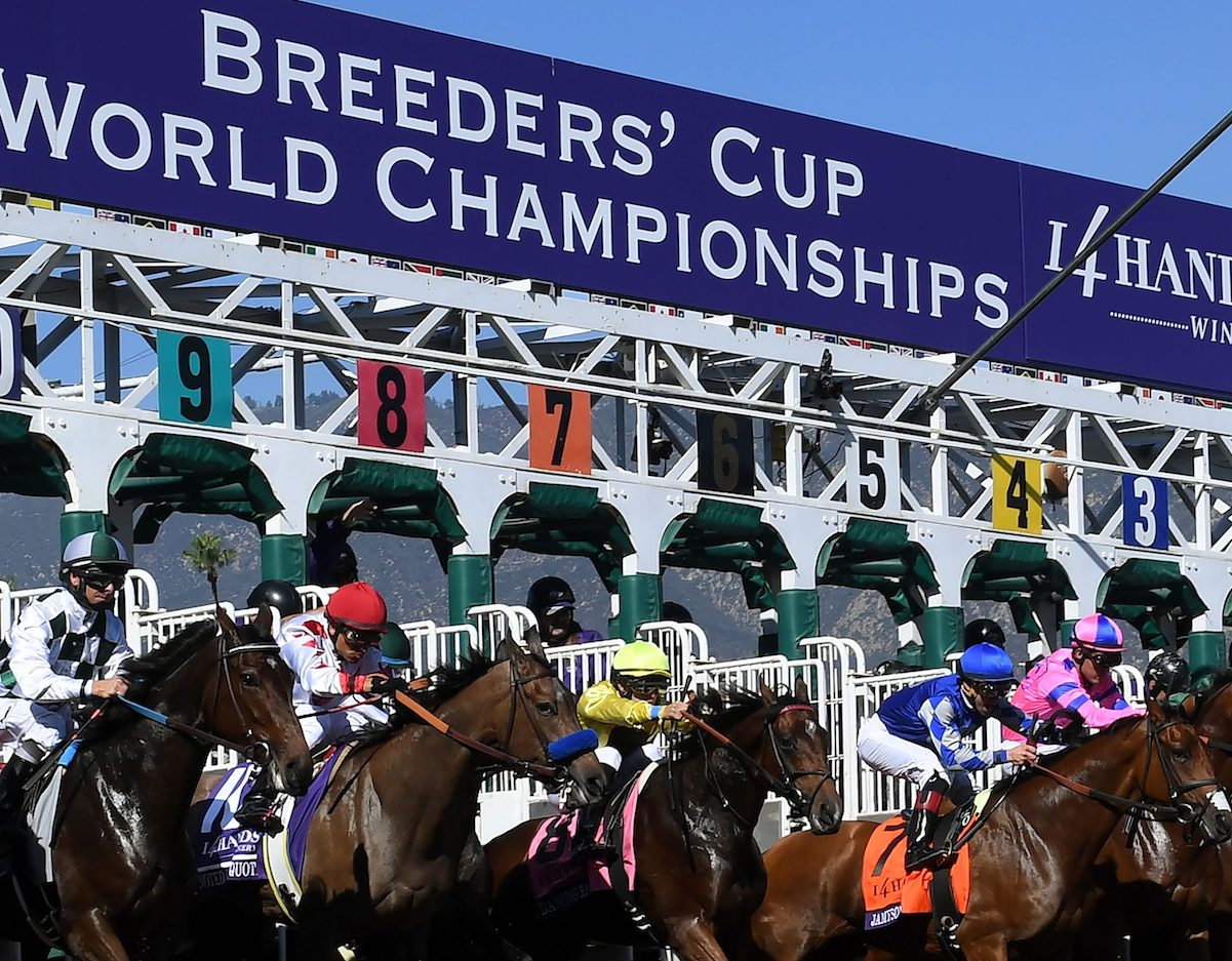 Breeders Cup Travel Package
